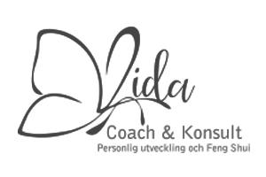Vida Coach & Konsult